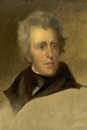 Andrew Jackson Presidents Of The United States Potus