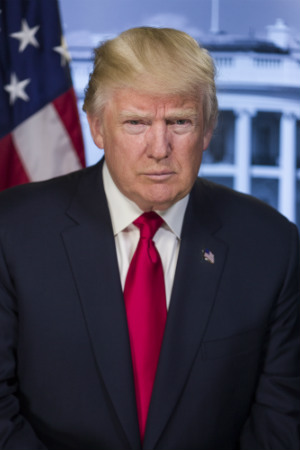 45th President Donald J. Trump, 2017-