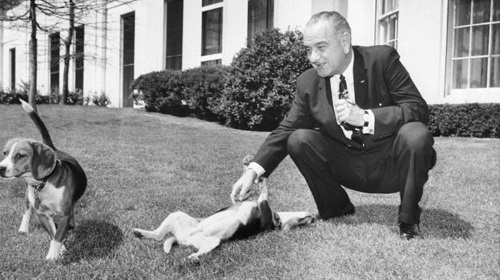 LBJ with dogs